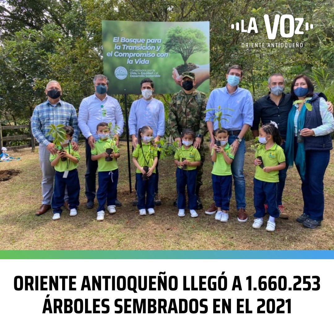 Oriente Antioqueño llegó a 1.660.253 Árboles sembrados en el 2021